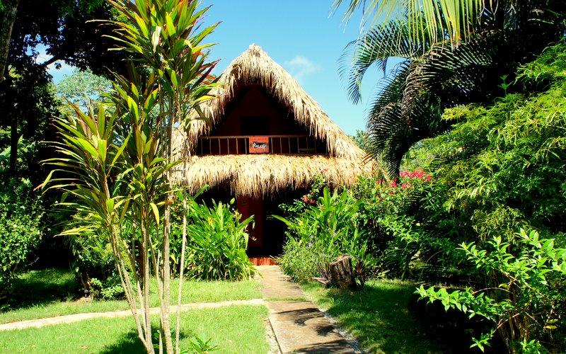 Casa del Gato Las Galeras Villa Rentals