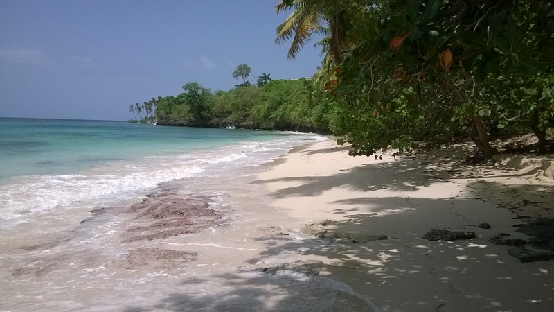 Playa Caleton Las Galeras Beach